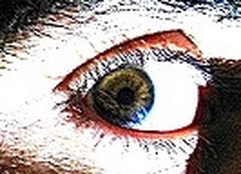 Yuri La's profile picture