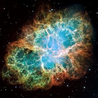 The Nebula profile picture