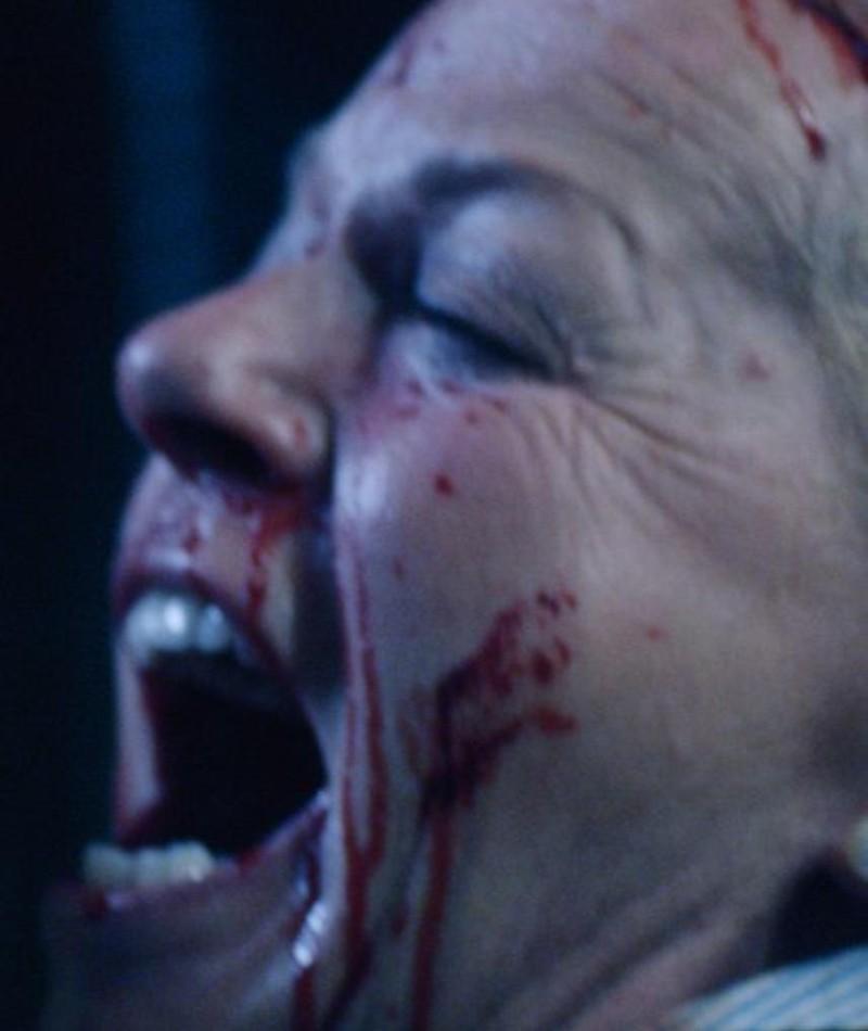 Photo of Brigitte Kren