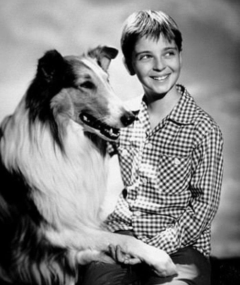 Photo of Tommy Rettig