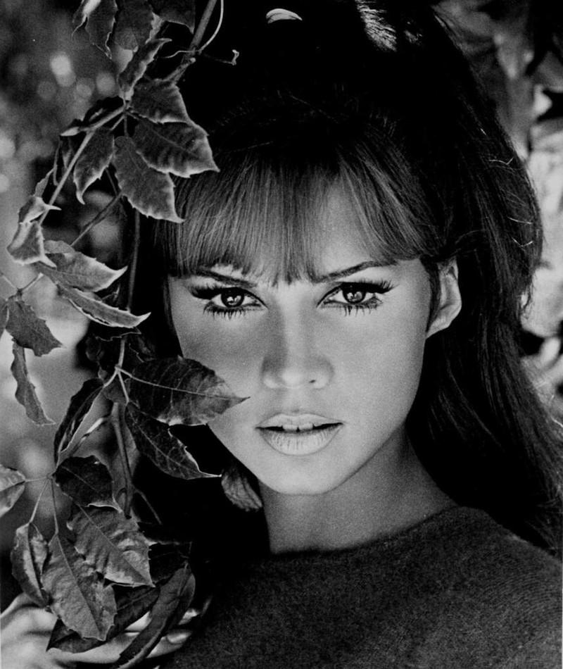 Photo of Jocelyn Lane