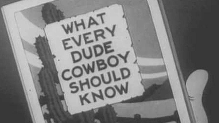Whoops! I'm a Cowboy
