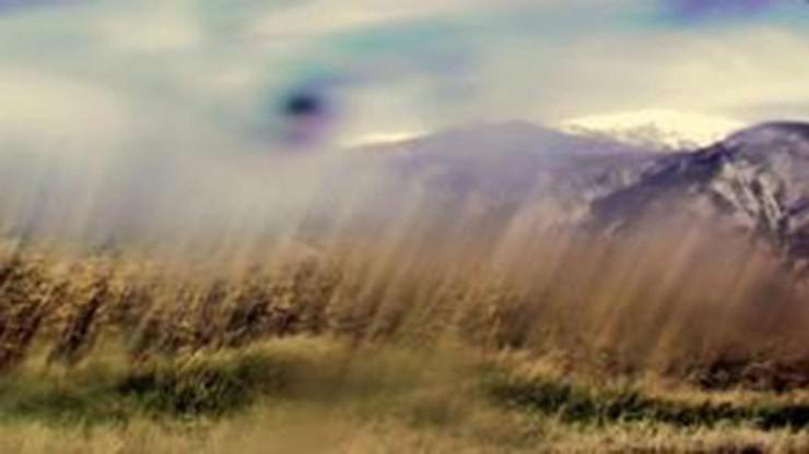 Duration Landscape Cornfield