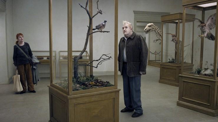 Una paloma sentada en una rama reflexionando sobre la existencia