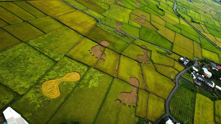 Beyond Beauty: Taiwan from Above