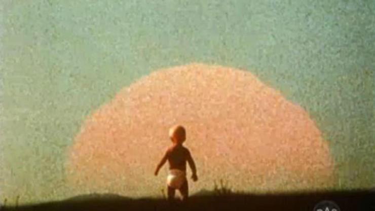 The Solar Film