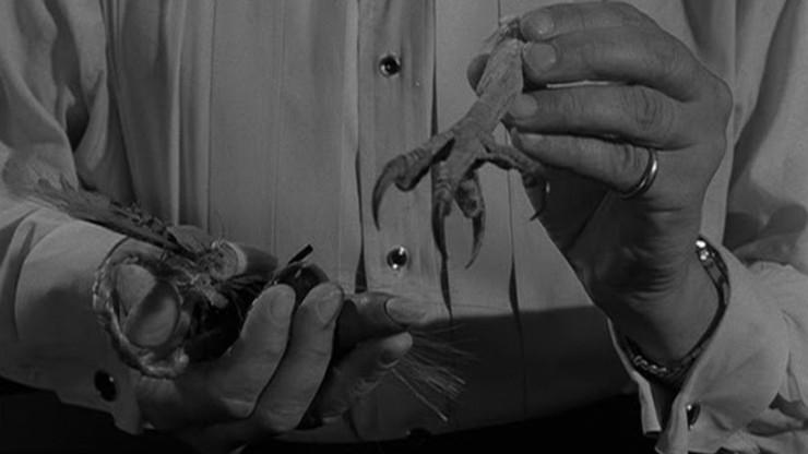The Twilight Zone: The Jungle