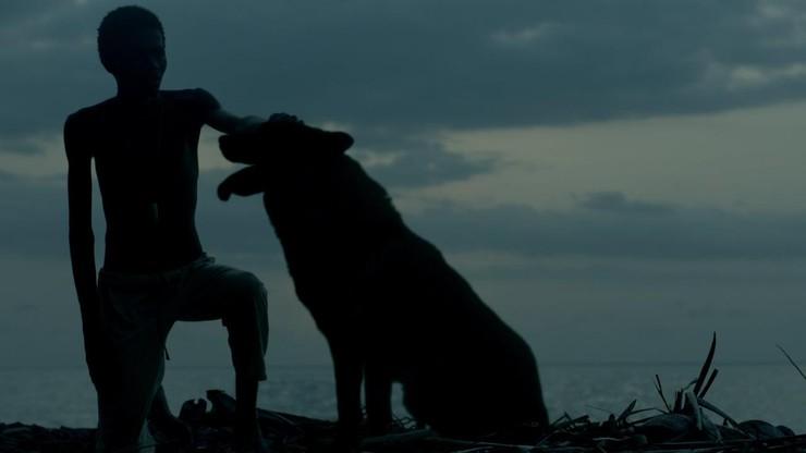 A Ilha dos Cães