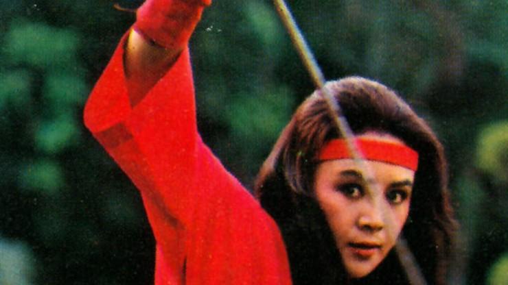 Challenge of the Lady Ninja