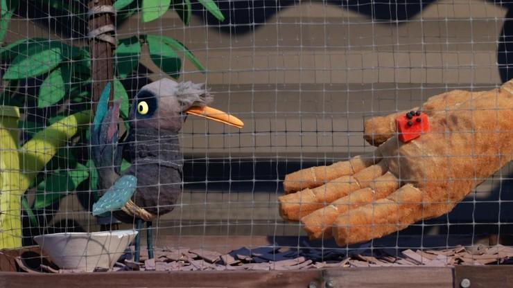 Birdlime