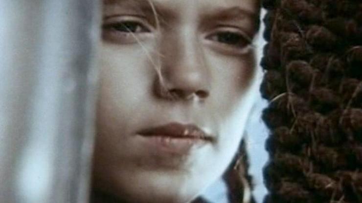 Arabella, the Pirate's Daughter