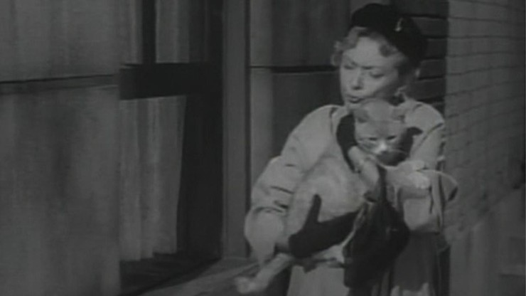 Alfred Hitchcock Presents: Miss Paisley's Cat