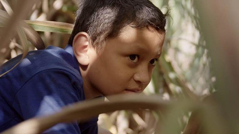 Jesser and the Sugarcane