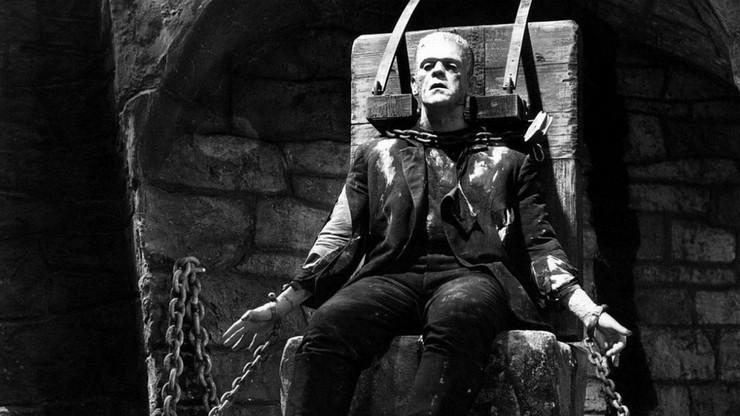 Frankenstein, o homem que criou o monstro