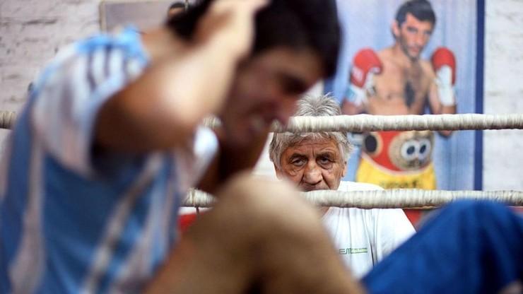 Boxeo Constitución