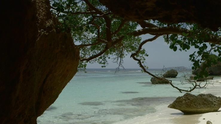 Mona, tesoro del Caribe