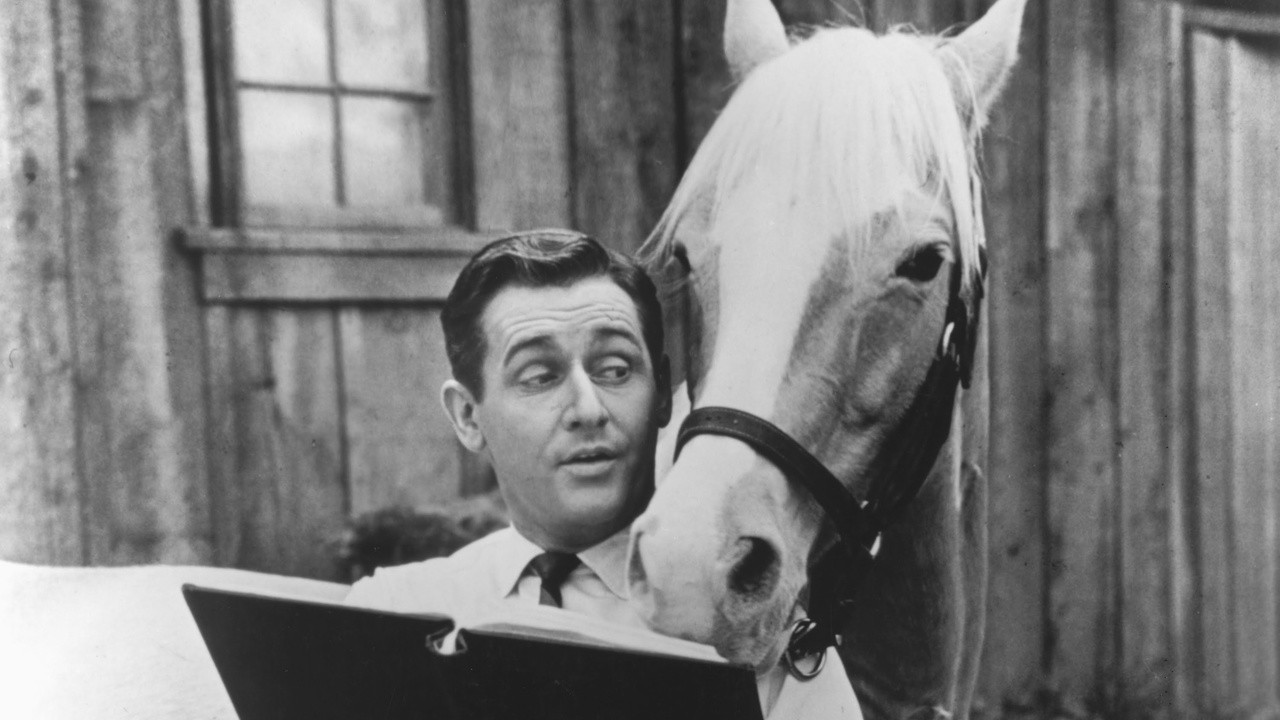 Mister Ed  – SE1 – Ep9 – The Missing Statue