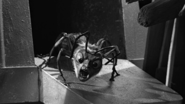 The Outer Limits: The Zanti Misfits