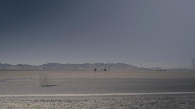 Lonesome Willcox