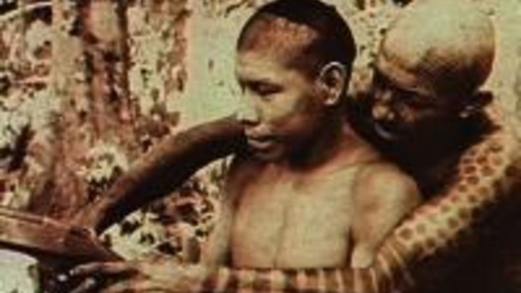 The Pacification War in Amazonia
