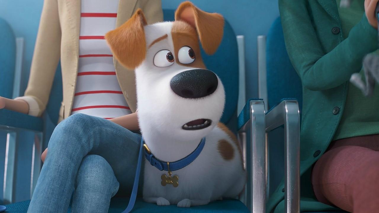 The Secret Life Of Pets 2 2019 Mubi