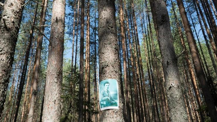 Karelia: International with Monument