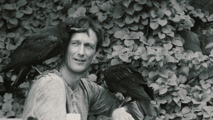 Nest. A Movie About Two People and Two Birds