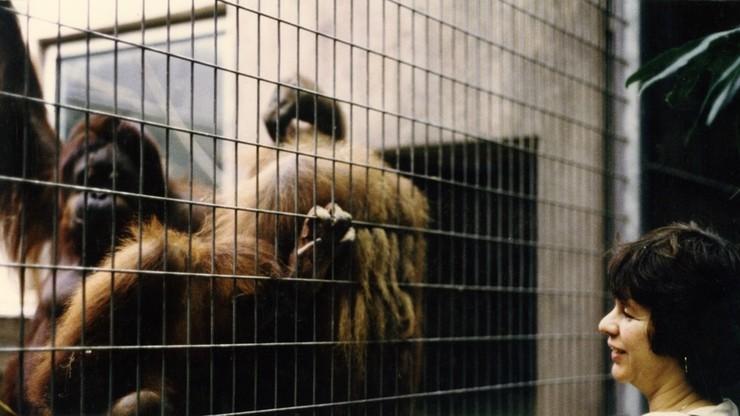 Rendez-vous im Zoo