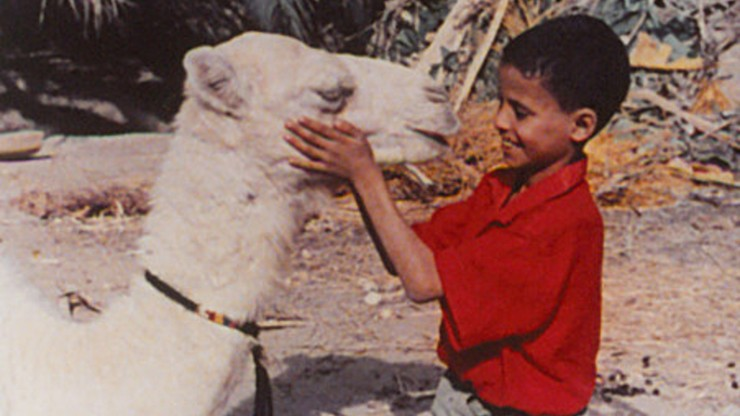 Zaa, The Little White Camel