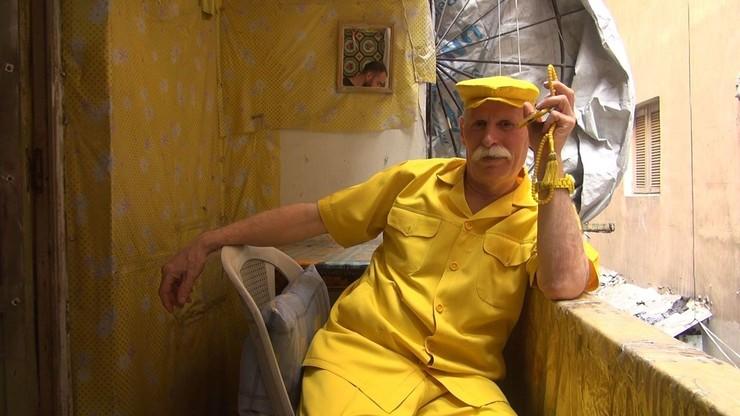 Simulation of Mr. Yellow