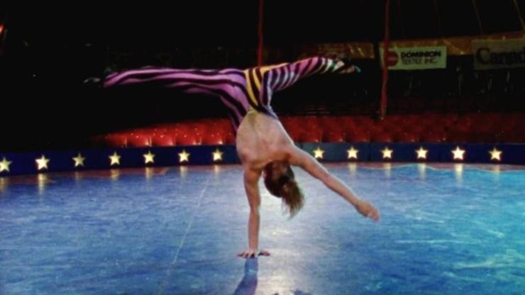 The Cirque: An American Odyssey