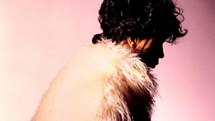 Prince: U Got the Look