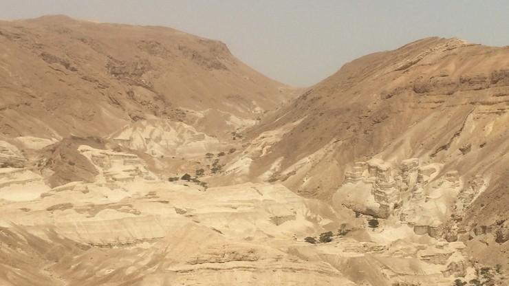 De la mèr(e) au desert