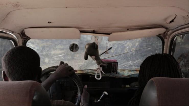 Wild Cab