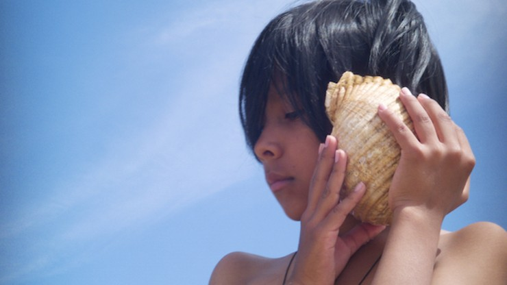 Time and the Seashell
