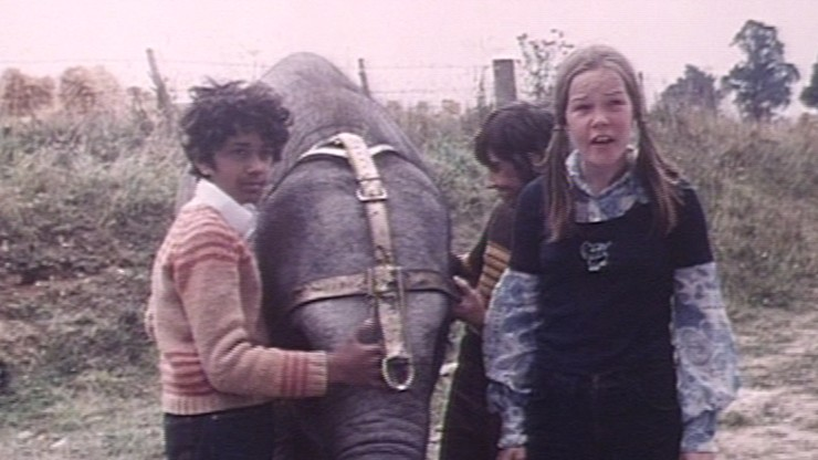 Anoop and the Elephant