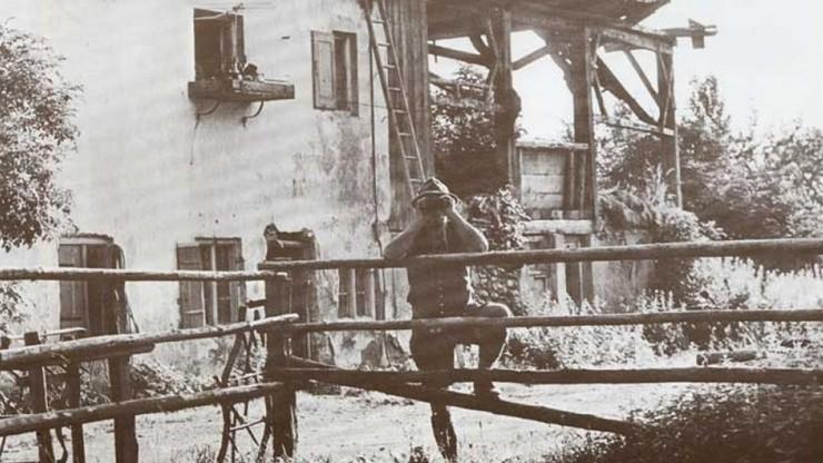 Die Grafen Pocci: Einige Kapitel zur Geschichte einer Familie