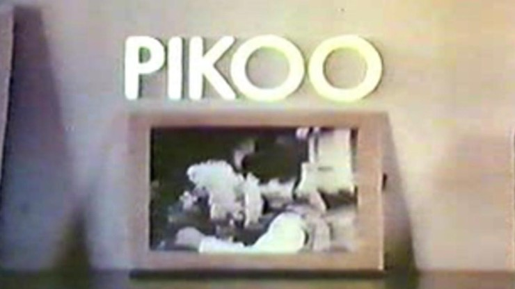 Pikoo's Day