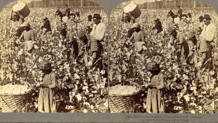 Capitalism: Slavery