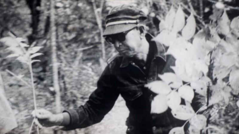 Dersu Uzala. Russian Dreams of Kurosawa