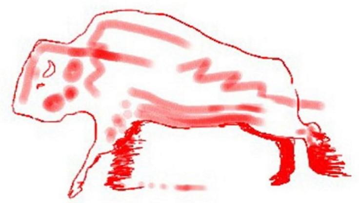 Red Buffalo Skydive
