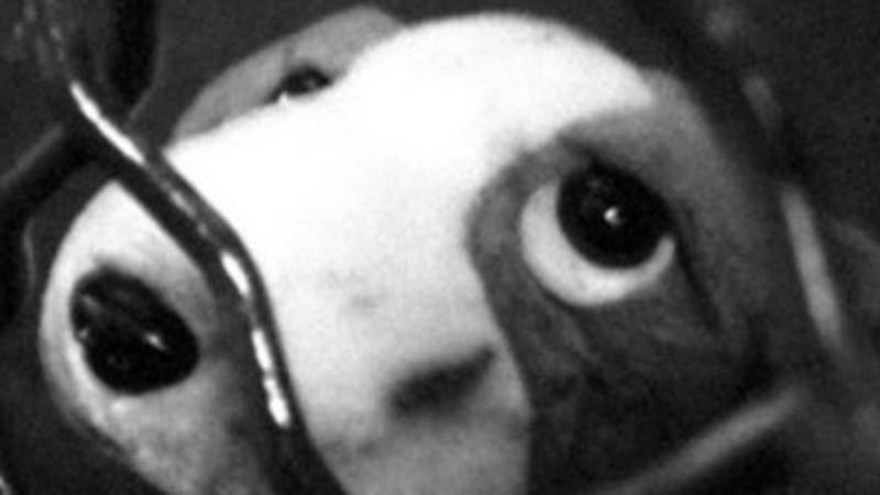 La Puppé