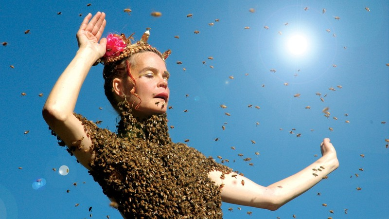 Queen of the Sun: What Are the Bees Telling Us?