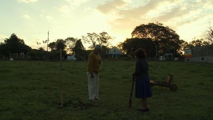 Novena (Nine Days of Prayer)