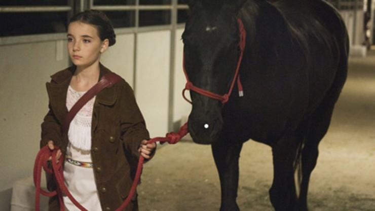 Equestrian Sexual Response