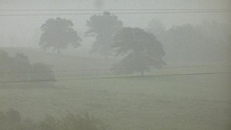 Fog Line