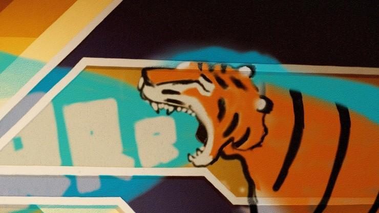 Graffitiger