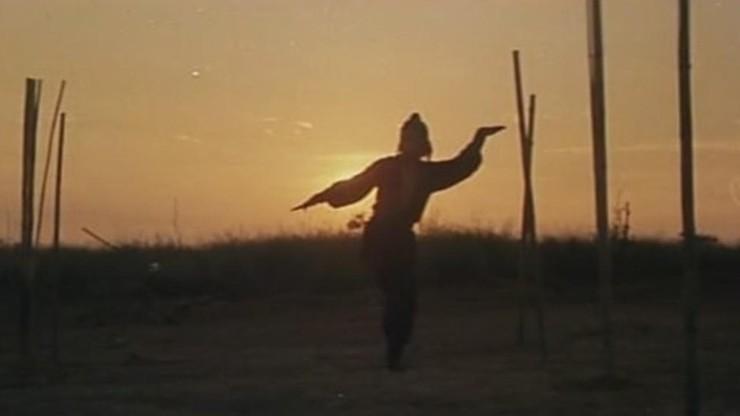 L'aigle de Shaolin