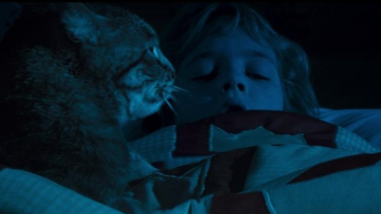Katzenauge (Film)