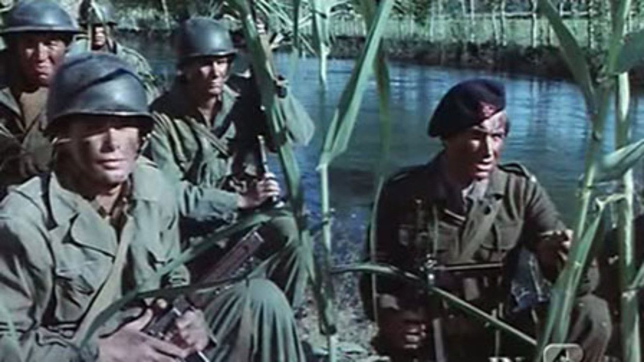War Movie : From Hell to Victory (1979)